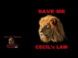 Brian May &amp Kerry Ellis - Born Free (Cecil's Version)