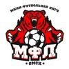Мини-Футбольная Лига г. Омск   МФЛ  Футбол Омск