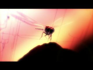 BBC: Чарльз Дарвин и Древо жизни / BBC: Charles Darwin and the Tree of Life (2009)