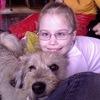 Радуга - развивающие игры с собакой