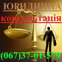 company_legal_expert
