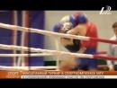 В спорткомплексе МГУ проходит Кубок Украины по таиландскому боксу и кикбоксингу