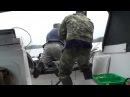 Рыбалка в Карелии. Щука 6.150 г. оз.Янисъярви