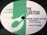The System -- You're In My System (Kerri Chandler Remix)