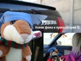 Хомяк фома снимает девочек на приоре(1 серия)