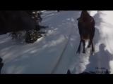 Открытие Национальной Охоты в зимний период. ShockingGroup