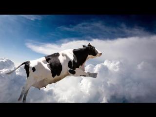 10 невероятных вещей, упавших с неба