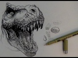 Pen and Ink Drawing Tutorials  How to draw a T-rex Dinosaur