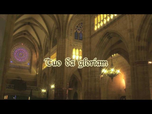 NON NOBIS DOMINE, SED NOMINI TUO DA GLORIAM - Catedral de Santiago - Bilbao