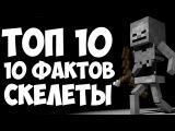 ТОП 10 ФАКТОВ О СКЕЛЕТАХ МАЙНКРАФТ