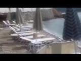 Морской лев загорает на шезлонге - http://vk.com/sasisa_ru