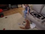 Кот воспитывает ребенка - очень смешно. Дай Лапу