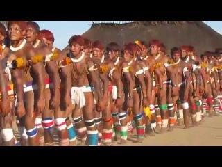 Aldeia kamaiurá territorio Xingu -Julho de 2011.