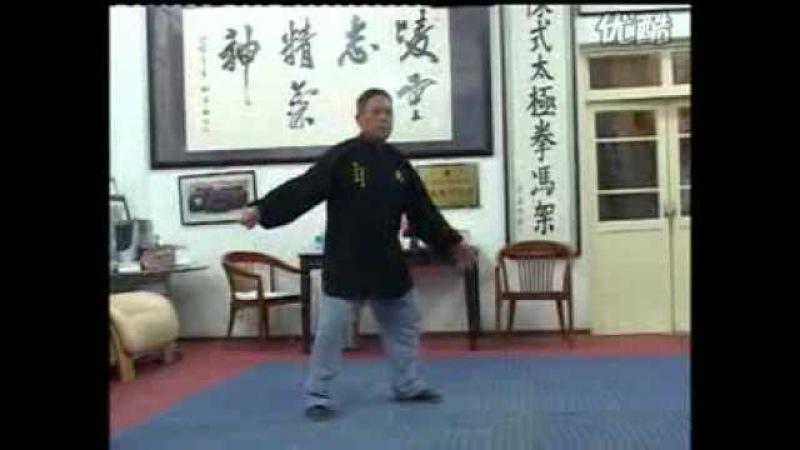 Feng Zhiqiang Hunyuan Taijiquan Pao Chui