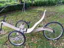 Incredible Wooden Bike
