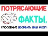 Потрясающие факты, способные взорвать ваш мозг! Часть 2 [AsapSCIENCE]