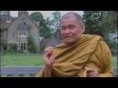 Compilation of Ajahn Chah's Teaching หลวงปู่ชา Ajahn Chah Theravada Buddhism