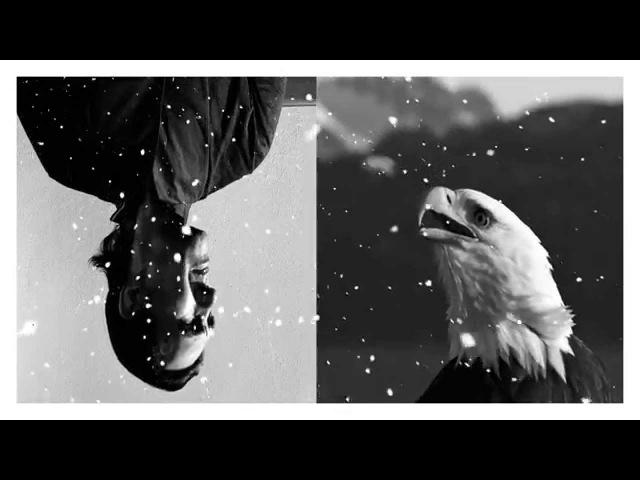 Ю-Питер — Чёрная птица - белые крылья