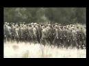 Небо славян в исполнении солдат армии РФ