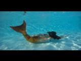 Mermaid swimming in the pool