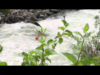 The North Fork Championship 2014   Highlight Reel