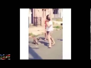 Oh no she didn't! Lady swings dog to hit another lady