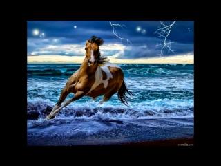 Песни нашего века - Лошади в океане