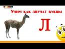 Алфавит русский Учим Буквы и Звуки с Кругляшиком - Буква Л