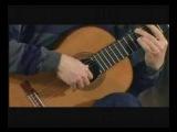 Antonio Vivaldi Concierto en D mayor-John Williams