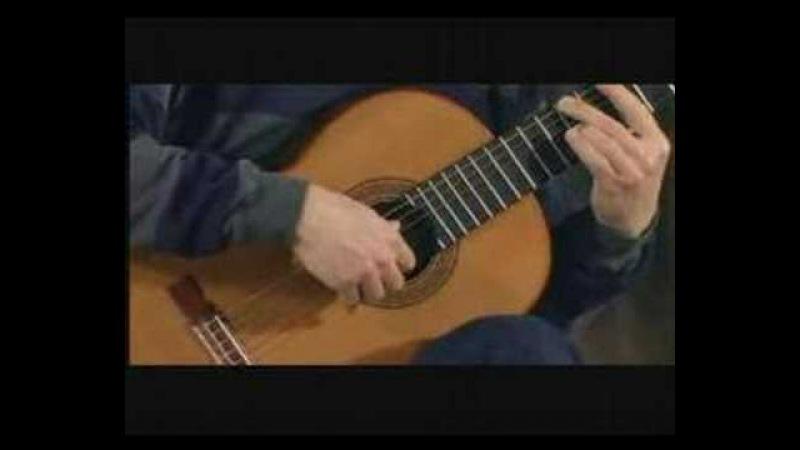 Antonio Vivaldi Concierto en D mayor John Williams
