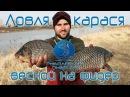 Ловля карася весной на фидер видео Рыболовный дневник