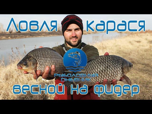Ловля карася весной на фидер видео : Рыболовный дневник