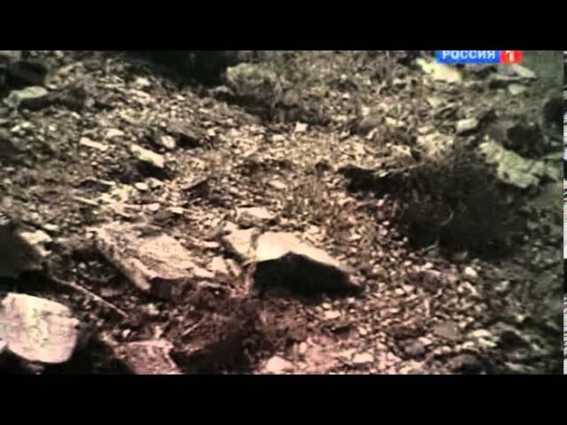 Афганистан: Охота на Осу.