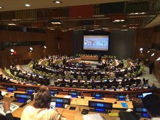 Владимир Мегре в Нью-Йорке на Всемирном молодежном саммите Nexus 2015. 2015 Nexus Global Youth Summit, New York City. Первый день саммита, штабквартира ООН.