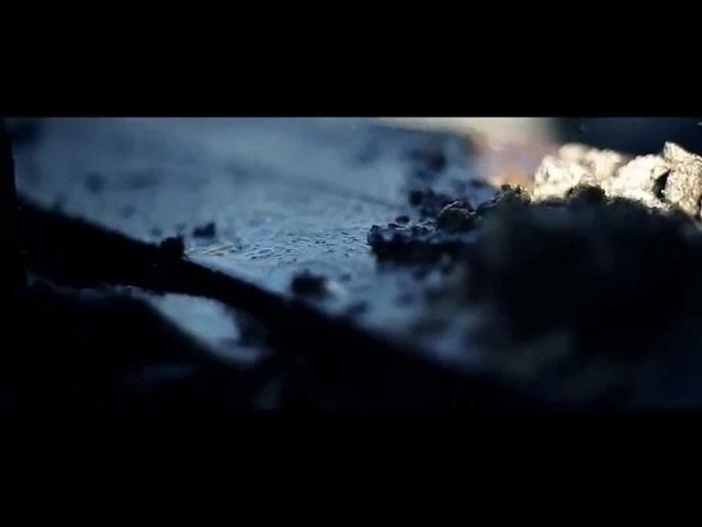 Доса-Песня про одного пса(Мухтар)