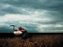 Depeche Mode The Sun and the Rainfall 2008
