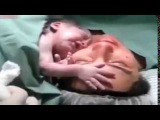 Newborn Lets Everyone Know,