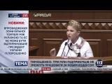 Тимошенко: Все, что связано с бюджетом, правительству не нужно (17.12.2015)