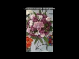 «букеты» под музыку Ранетки(Лера) - Было или небыло была ли любовь красивые цветы ушла ли она ушел ли ты была ли любовь или не б