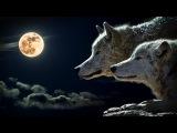 Музыка для Души - Музыка для Сна Гипноз от Стресса (дельта Волны) Глубокий Сон Красивая Музыка