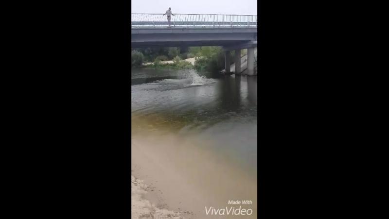 XiaoYing Video 1438198611517