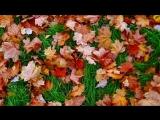 «Осенние листья !!!» под музыку Алла Пугачева  - Осенние листья. Picrolla