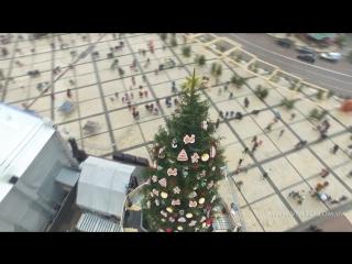 Новогодняя елка на Софийской площади в Киеве