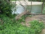Прогулки по Безымянке, часть 4: поиск места для купания