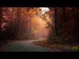 STAMATIS SPANOUDAKIS - Autumn
