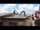 Ladrão gato em fuga no telhado - Muito engraçado very funny