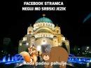 Neguj mo srbski - Srbska nova godina