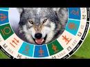 Славянский гороскоп чертог волка 25 февраля 22 марта