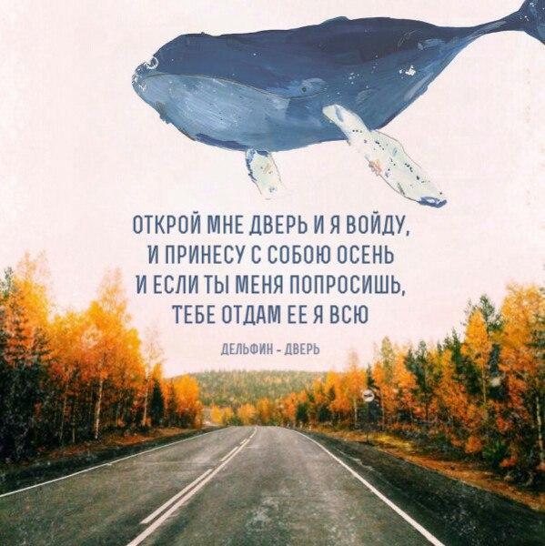 http://cs627222.vk.me/v627222844/21292/fVVw5m1RMhY.jpg