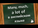 Many much a lot of в английском языке